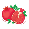 pomegranate (1).png
