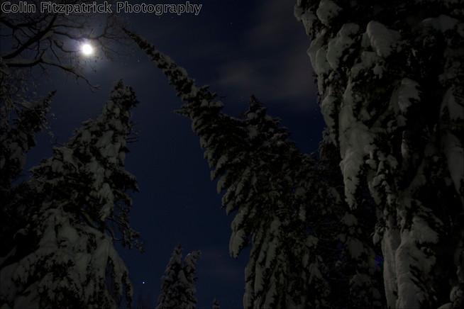 Midnight Photography