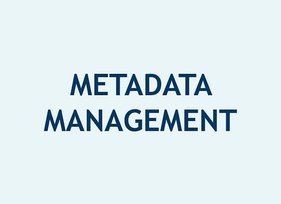 Gestión de Metadatos (U$)
