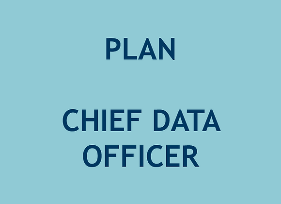 Plan Chief Data Officer (U$)