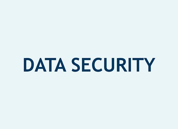 Seguridad de Datos (U$)