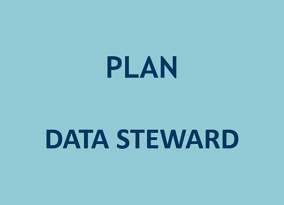 Plan Data Steward (U$)