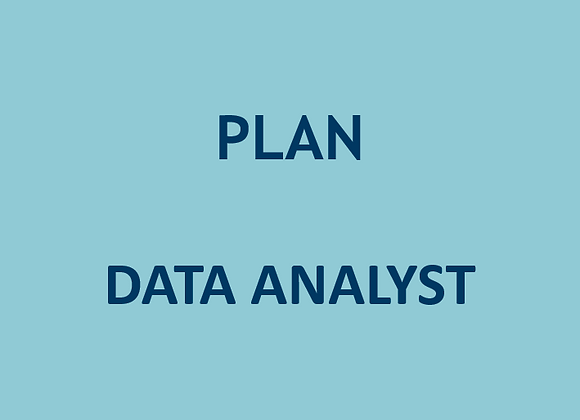 Plan Data Analyst (U$)