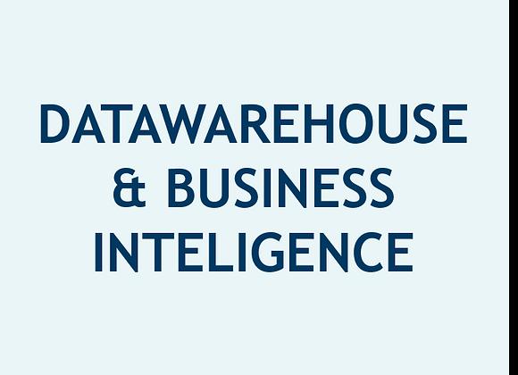 Datawarehouse e Inteligencia de Negocios (U$)