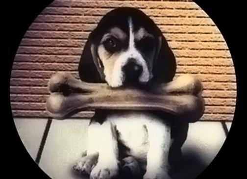 Puppy Bone