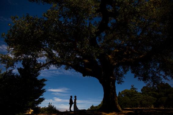 Mountain House Estate Wedding Photos-46.