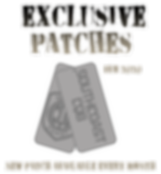 Patch Monthly - Feb.png