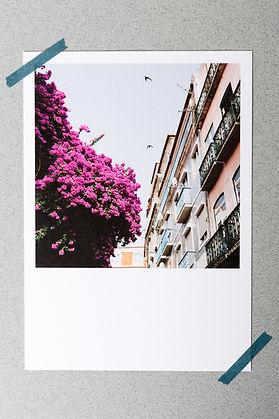 Postkarten_food travel_Antje Braga Photo