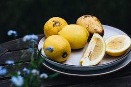 portugiesische Zitronenentarte #portugiesischbacken #zitronentartemitbaiserhaube #sommerkuchen
