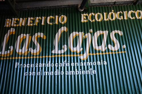 Costa Rica Las Lajas Yellow Diamond
