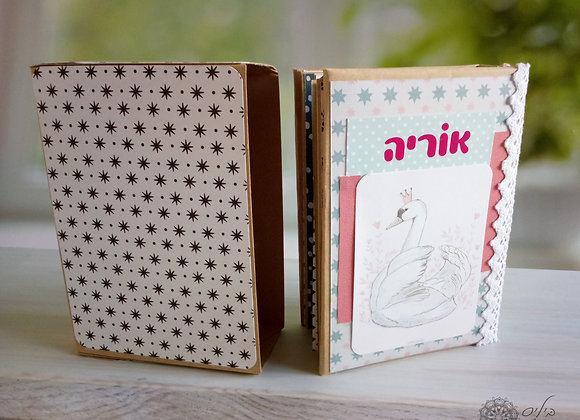 אלבום בתוך קופסה