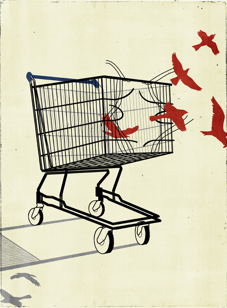 New Republic - post consumerism  society
