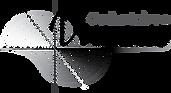 Logo Vivaxis web trans.png