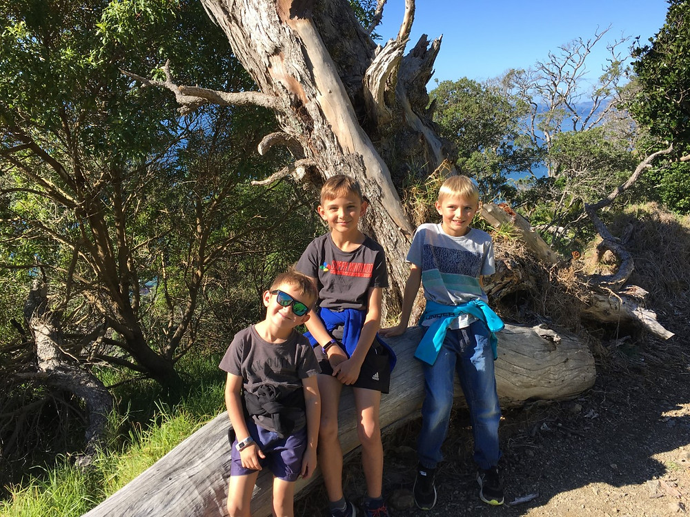 3 boys sitting on a big log while out on a nature walk