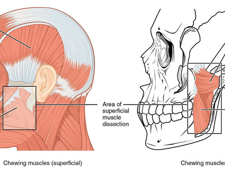 What are TMJ/TMD Disorders? (Part IV)