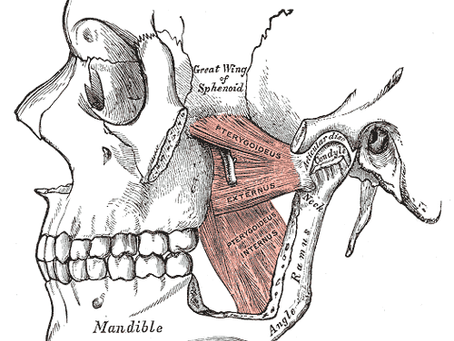 What are TMJ/TMD Disorders? (Part II)