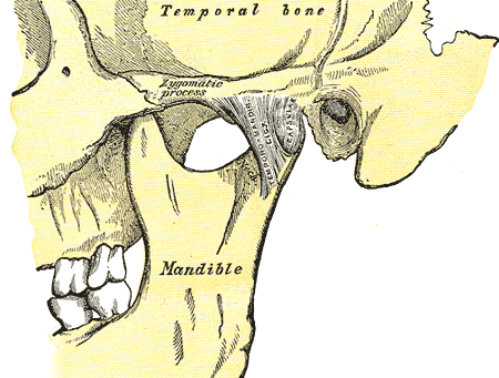 What are TMJ/TMD Disorders? (Part I)
