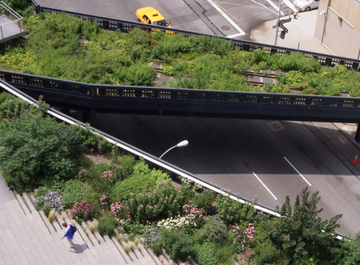 ELEVATED - GARDENS OF THE HIGH LINE