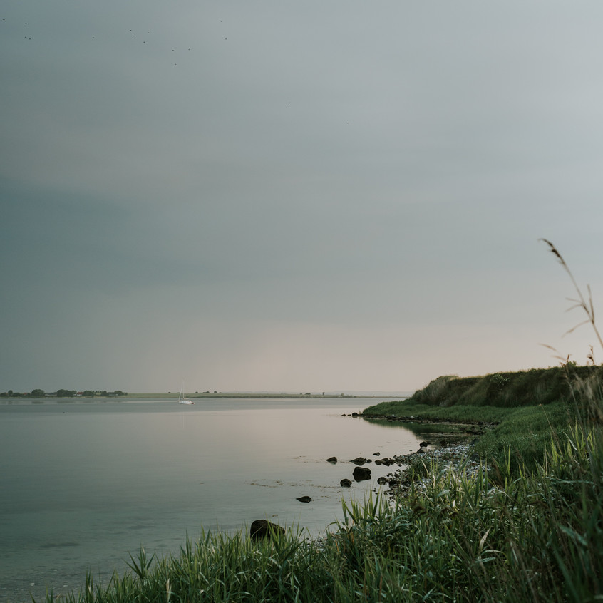 Scenes from Sigridsminde - Images all by Camilla Jorvad. All Rights reserved.