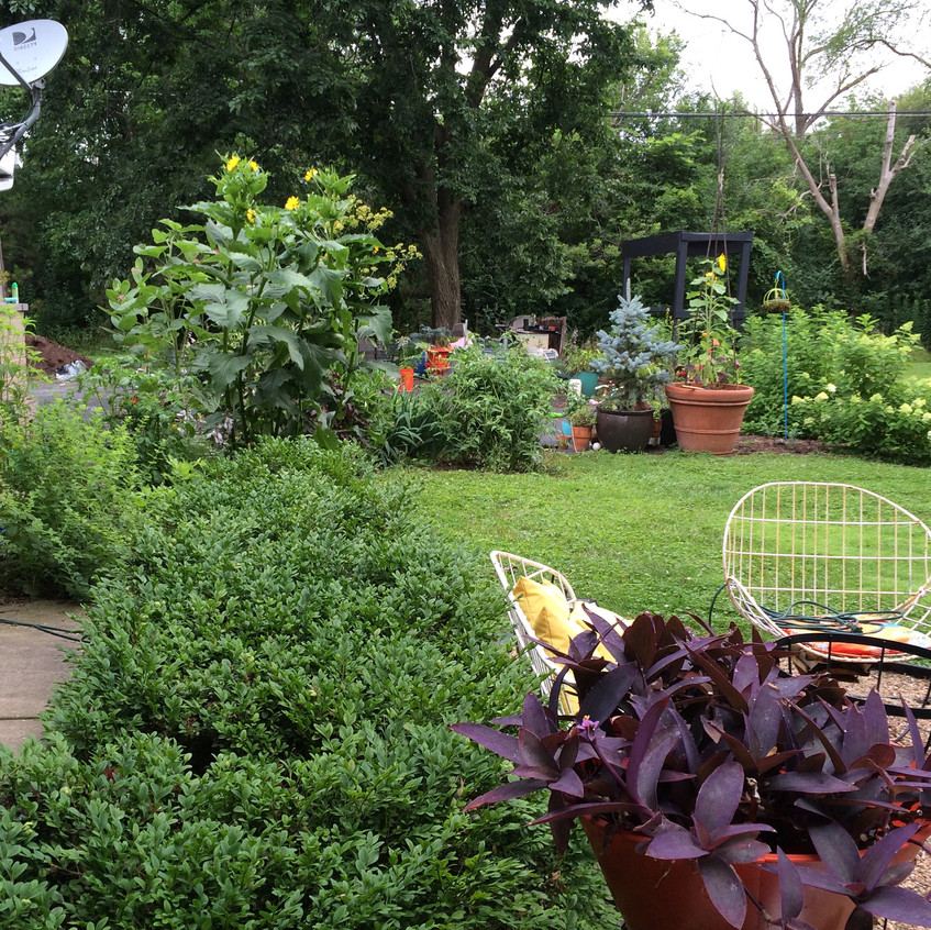 Amanda's Adventure Garden