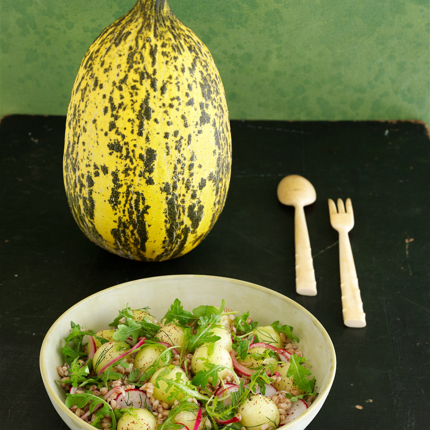 "Melon Farro and Radish Salad - from ""The Melon"" - written by Amy Goldman, photos by Victor Schrager, all rights reserved."