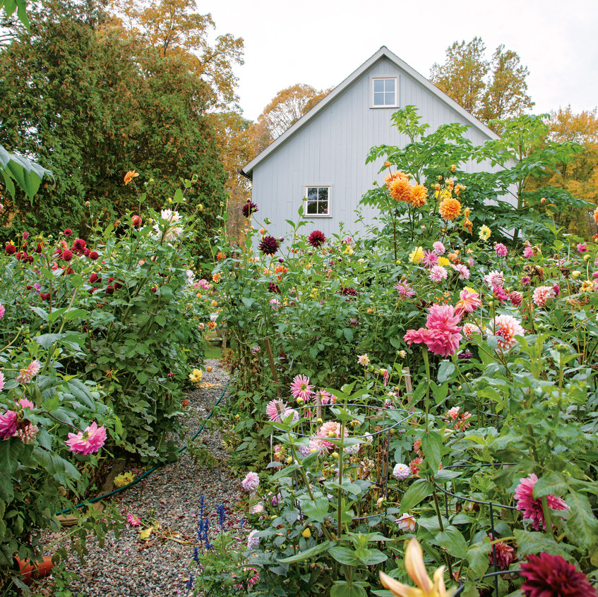 """High Summer in the Garden -from """"Frances Palmer: Life in the Studio, Inspiration and Lessons on Creativity"""" (Artisan Press, Oct 6, 2020), all rights reserved."""