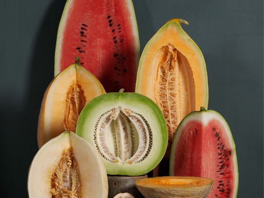 SUMMER GARDEN GEMS: THE MELONS, AMY GOLDMAN, HEIRLOOM GARDENER