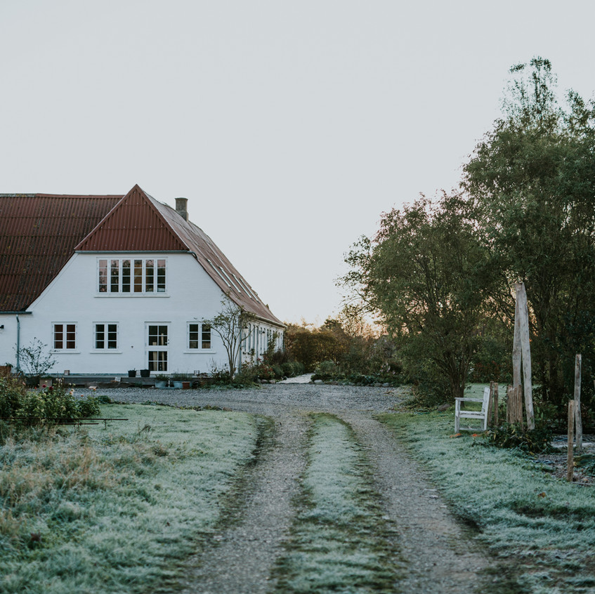 Sigridsminde - Scenes from Sigridsminde - Images all by Camilla Jorvad. All Rights reserved.