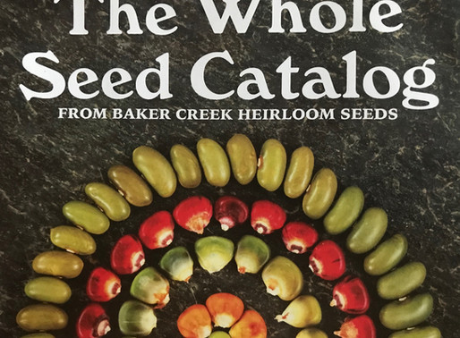 SEED LIFE, with JERE GETTLE, BAKER CREEK SEEDS