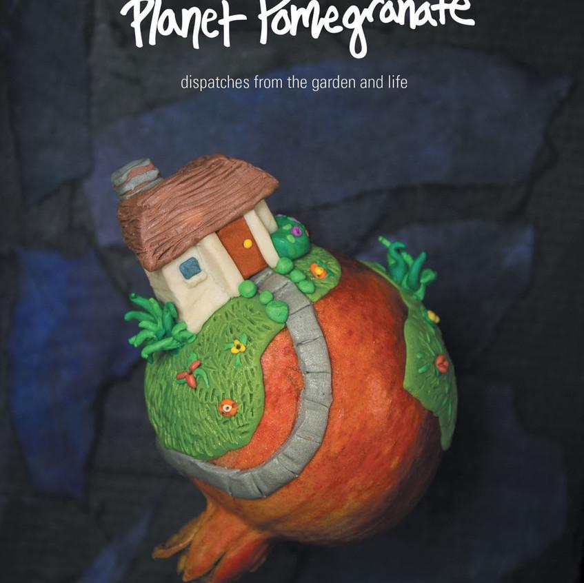 Plant Pomegranate Book Cover