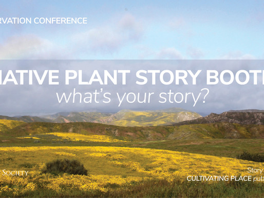 CALIFORNIA NATIVE PLANT WEEK with VINCENT BELLINO AND VOICES OF NATIVE PLANT ENTHUSIASTS