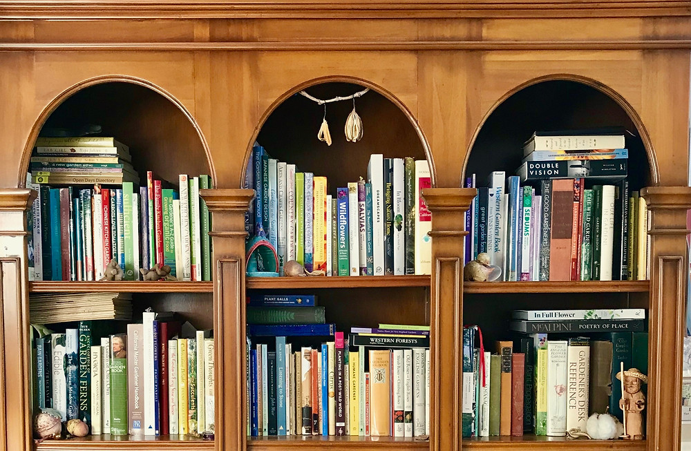 A person's book shelves tell you a lot about them as people I think. Here is one set of my 6 bookshelves. I obviously tidied it up A LOT before taking the photo. Jennifer Jewell, All rights reserved
