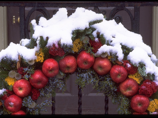 THE SPIRIT OF CHRISTMAS PAST: A GARDEN HISTORY LESSON AT COLONIAL WILLIAMSBURG