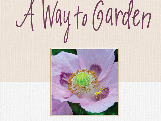 A WAY TO GARDEN, with MARGARET ROACH