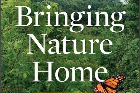 Bringing Nature Home - Expanded Second Edition, by Doug Tallamy (Timber Press).