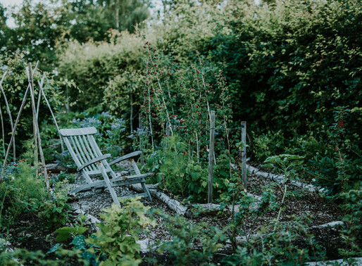 TRUSTING THE NATURE OF OUR GARDENS & SELVES, Camilla Jørvad