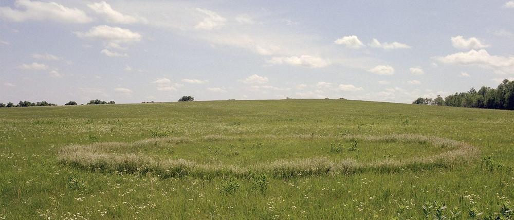 Tallgrass Prairie - photo by Terry Evans.