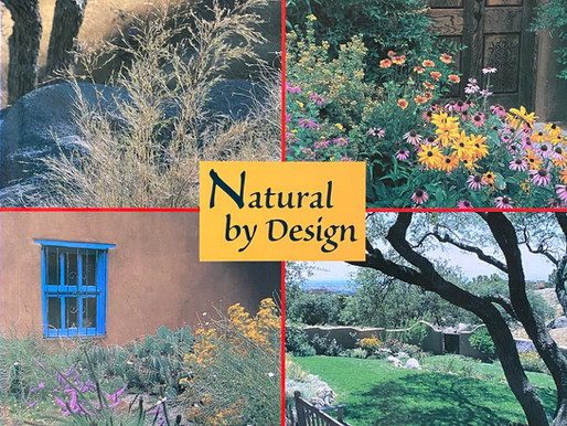 BEAUTY & BALANCE: GARDENS OF THE HIGH DESERT, JUDITH PHILLIPS