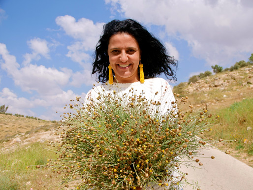 SEEDS: LESSONS ON TRANSFORMATION, VIVIEN SANSOUR & THE PALESTINE HEIRLOOM SEED LIBRARY