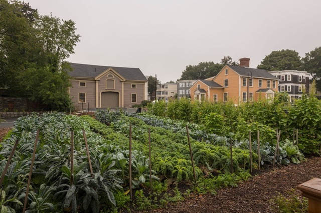 """The growing, teaching, healing and supporting, all emanate  from our headquarters -- the Historic Fowler Clark Epstein Farm in Mattapan. Image courtesy of Urban Farming Institute, all rights reserved."