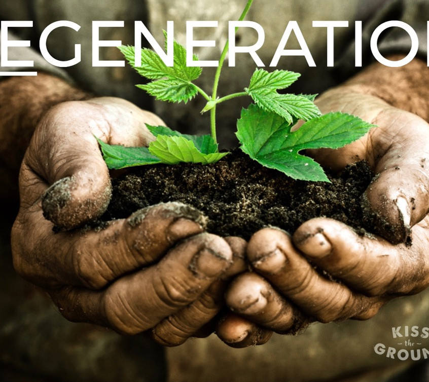 Regeneration is a World View