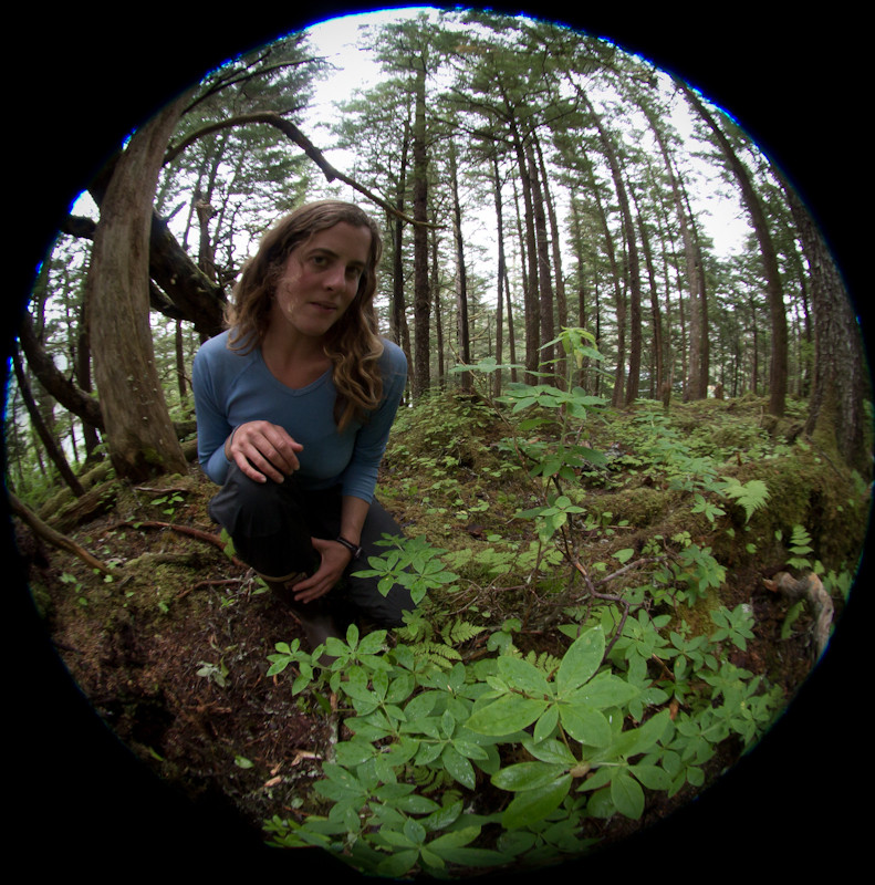 Lauren Oakes, in situ among Alaskan Yellow Cedar stand. Image courtesy of Lauren E. Oakes.