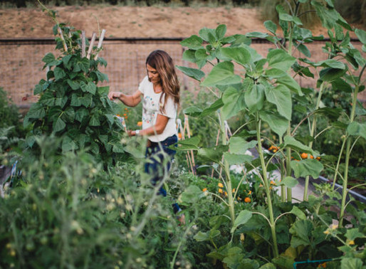 GROW WHAT YOU LOVE with EMILY MURPHY