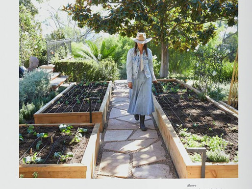 A GARDEN CAN BE ANYWHERE, with LAURI KRANZ, EDIBLE GARDENS LA