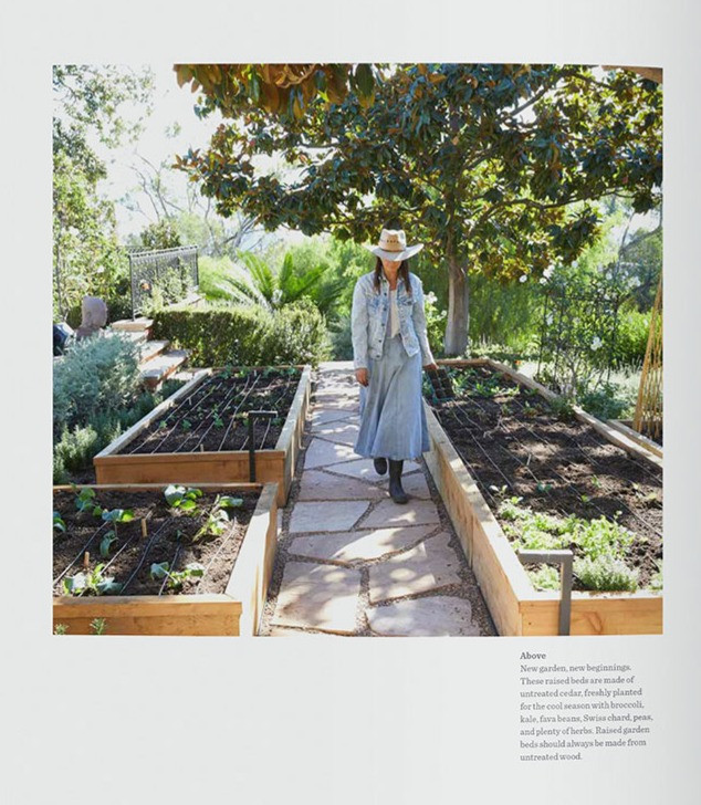 """Lauri Kranz - on beginnings in a garden. From """"A Garden Can Be Anywhere"""" - all rights reserved."""