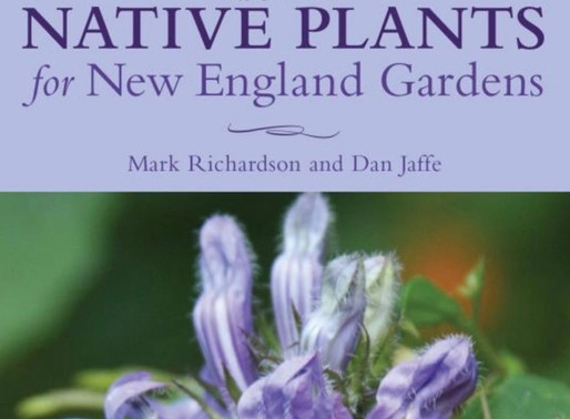 THE NEW ENGLAND WILDFLOWER SOCIETY & POLLINATE NEW ENGLAND