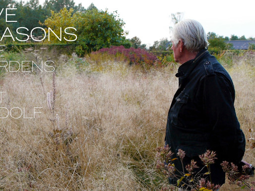 'FIVE SEASONS: THE GARDENS OF PIET OUDOLF', WITH FILMMAKER THOMAS PIPER
