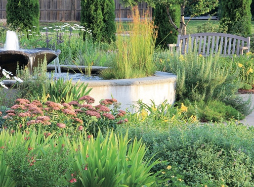BEST OF CP: THE THERAPEUTIC POWER OF THE GARDEN, with CLARE COOPER MARCUS