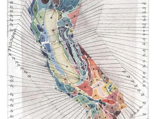 THE BOTANICAL ARTISTRY of OCTOBER SERIES, Part 2: OBI KAUFMANN & HIS CALIFORNIA FIELD ATLAS