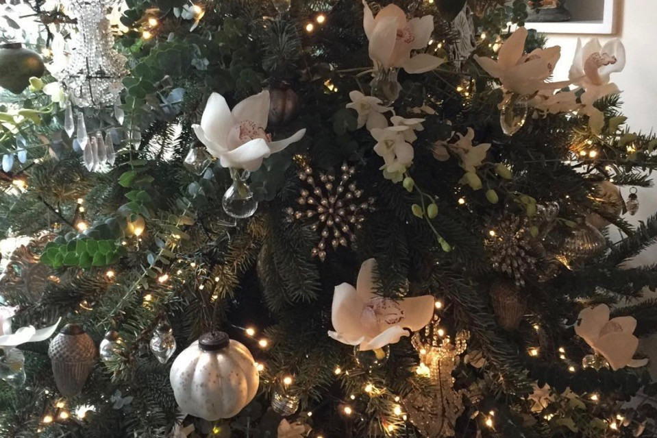 A luxurious winter tree trimmed with silver, sparking lights and orchid blooms. Photo courtesy of Thomas Broom-Hughes.